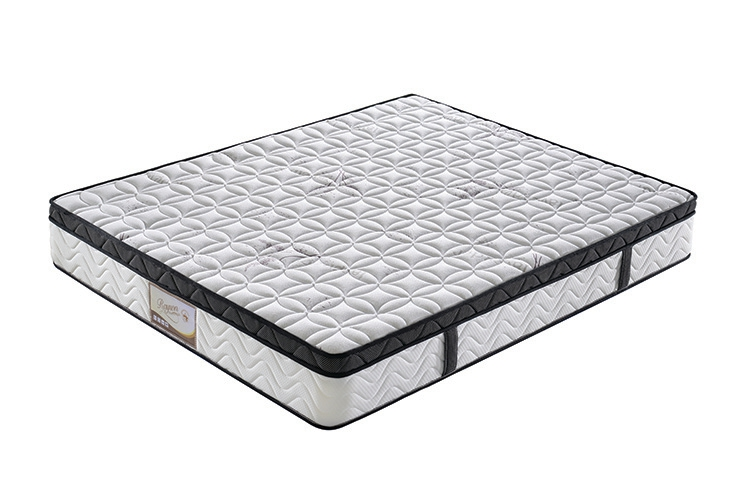 Rayson Mattress plush buy spring mattress manufacturers-1