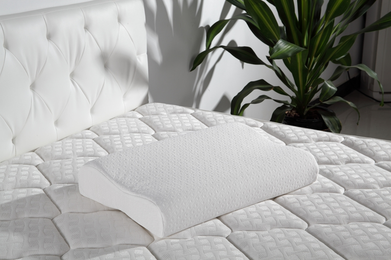 Rayson Mattress-Find Latex Memory Foam Pillow | Latex Pillow Sale-2