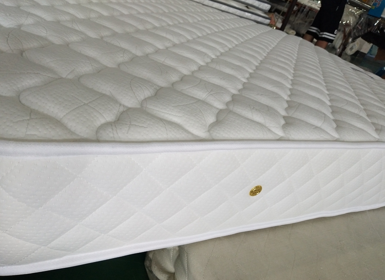 Rayson Mattress-Wholesale Various High Quality Compressed Mattress Products-2