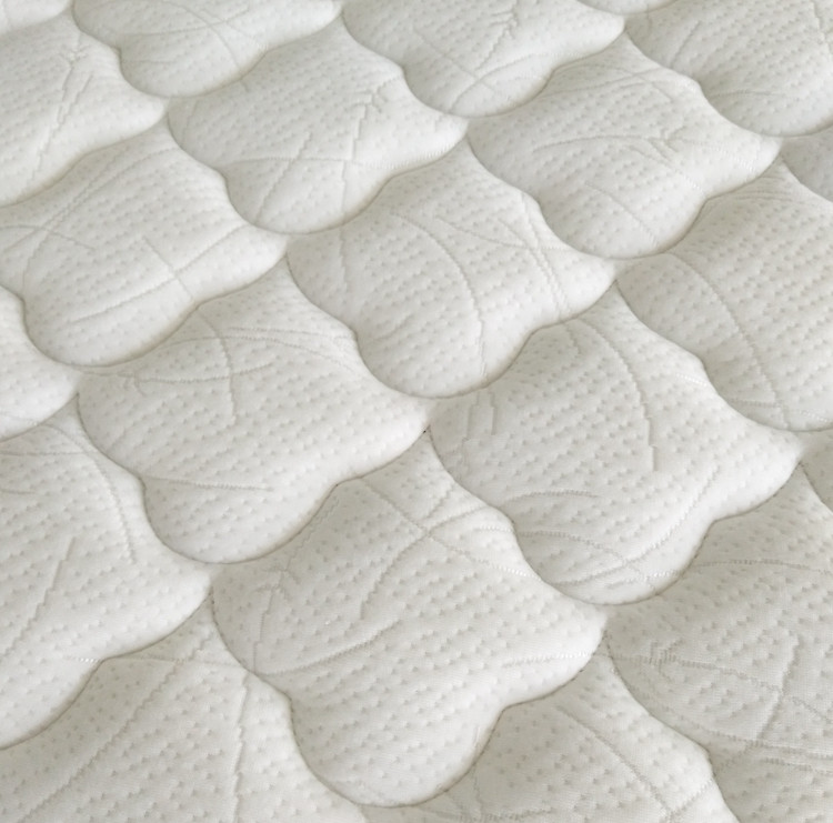 Rayson Mattress-Wholesale Various High Quality Compressed Mattress Products-4