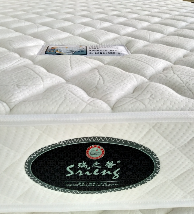 Rayson Mattress-Wholesale Various High Quality Compressed Mattress Products-5