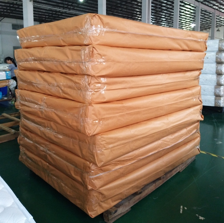 Rayson Mattress-Wholesale Various High Quality Compressed Mattress Products-6