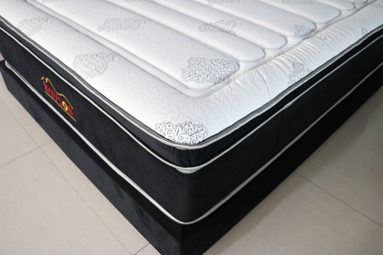 Rayson Mattress-Pocket coil box spring mattress king size firm euro top-1