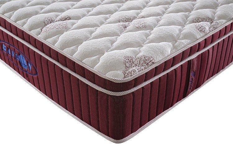 Rayson Mattress euro hotel pillow top mattress pad Supply