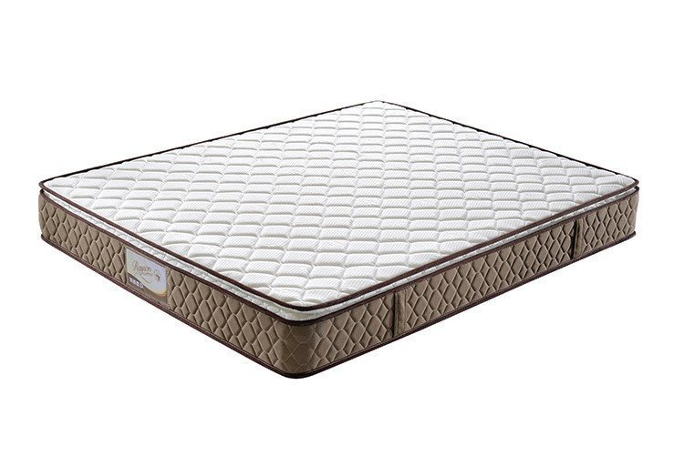 pocket springs for sale durable store Warranty Rayson Mattress