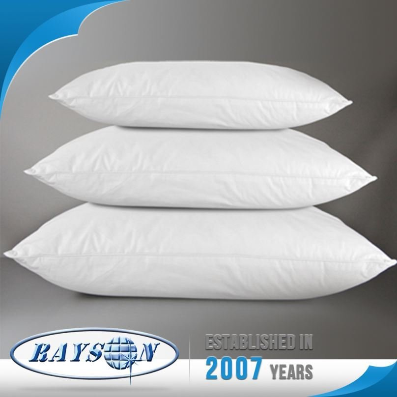 China Promotions Polyester European Pillow