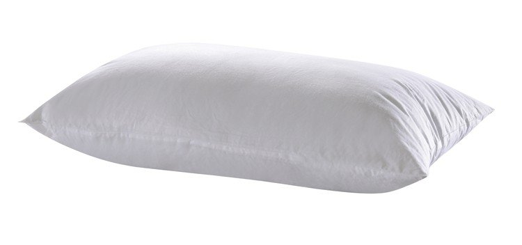 Rayson Mattress Top down filling for pillows manufacturers-3