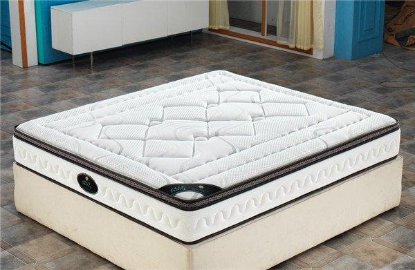 Rayson Mattress-Polyester Wadding Thicken Dream Night Mattress 200X200 Fashion Design best mattress -1