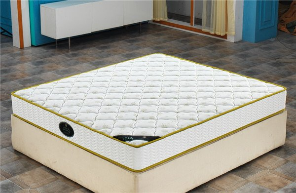 Rayson Mattress-European Size Double Euro Top Pocket Springwell Mattress China the best mattress Who-1
