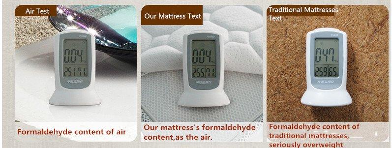 Rayson Mattress-Soft Bed Washable Fabric Import Latex Single Mattress Buy discount mattress sets Who-6
