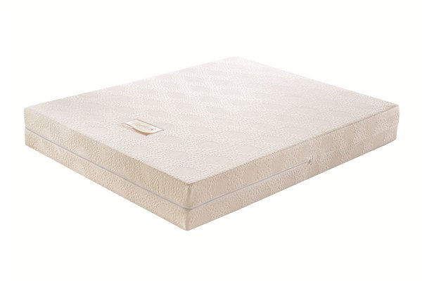 Rayson Mattress-Soft Furniture:Bedroom Furniture Sponge Foam Filler Roller Mattress Topper Customize-1