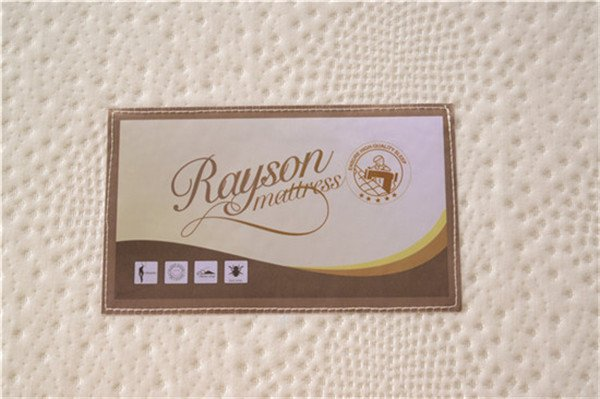 Rayson Mattress-Soft Furniture:Bedroom Furniture Sponge Foam Filler Roller Mattress Topper Customize-2