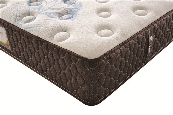 Rayson Mattress-Bedroom Furniture Pillow Top Mattress Factory Memory Foam Mattress Fashion Design ma-2