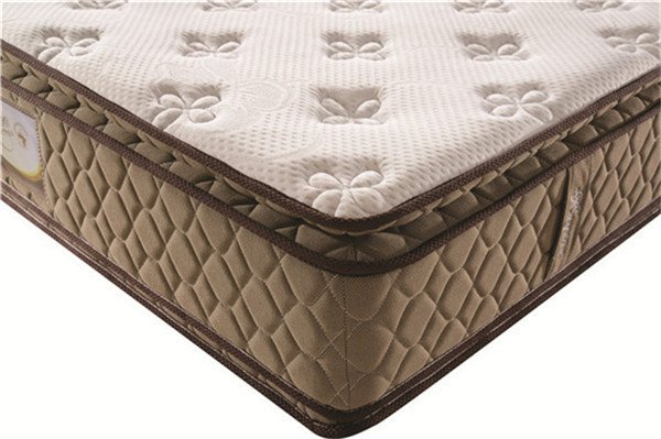 Rayson Mattress-Japanese 2016 Thick Double Pillow Top Spring Mattress Wholesale Hot-selling memory f-2