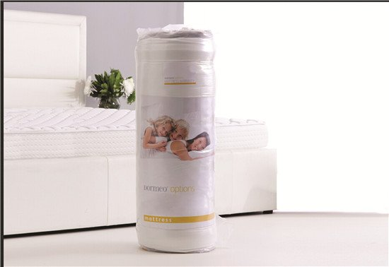 Rayson Mattress-Roll Up Roll Out Bed Beds Mattress Single Double Camping Low-Price single mattress c-5