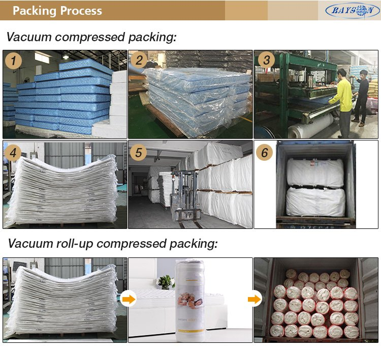 Rayson Mattress-Roll Up Roll Out Bed Beds Mattress Single Double Camping Low-Price single mattress c-9