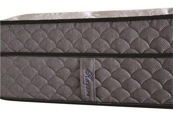 Rayson Mattress-Sexy King Size Two Layers Spring Mattress Bedroom Furniture Brand New memory foam ma-3