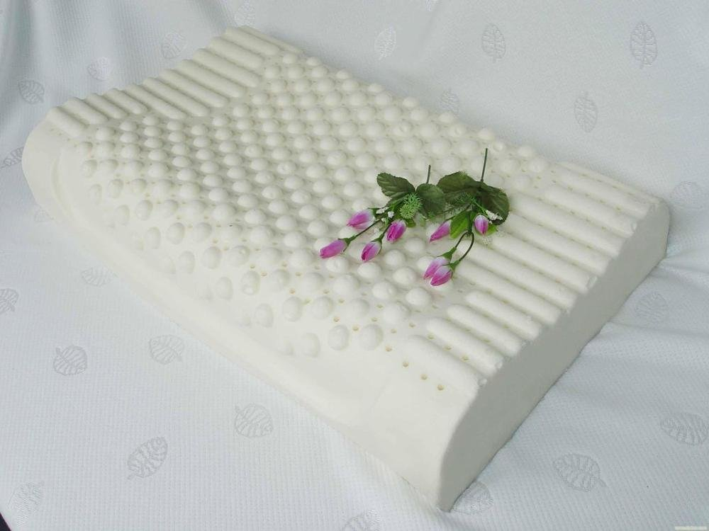 Rayson Mattress-Sleep Innovations Anti-Dust Health Latex Foam Rubber Pillow World-wide memory foam m-3