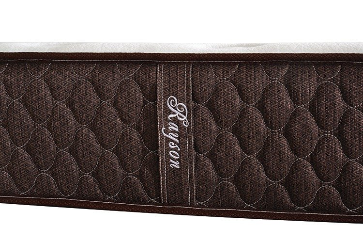 Rayson Mattress-Hot Sales 3 Cm Memory Foam Five Star Hotel Pocket Spring Mattress-2