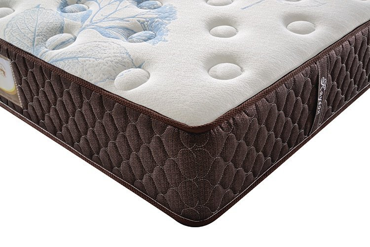 Rayson Mattress-Hot Sales 3 Cm Memory Foam Five Star Hotel Pocket Spring Mattress-4