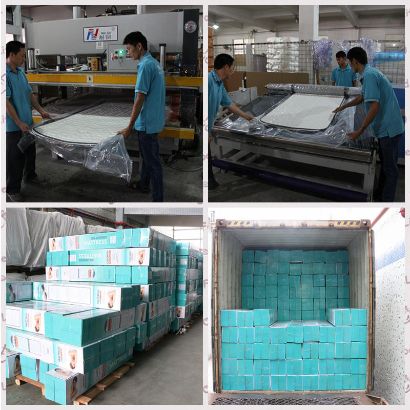 Rayson rolled mattress in box bedroom furniture factory price