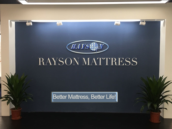 news-RAYSON 2018 I Am The Champion Team Salon The 123rd Canton Fair Commendation Conference-Rayson