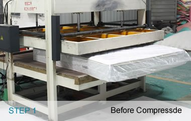 Rayson Mattress-Luxurious Pillow Top Box Spring Mattresses With Non Woven Fabric Excellent Quality p-32