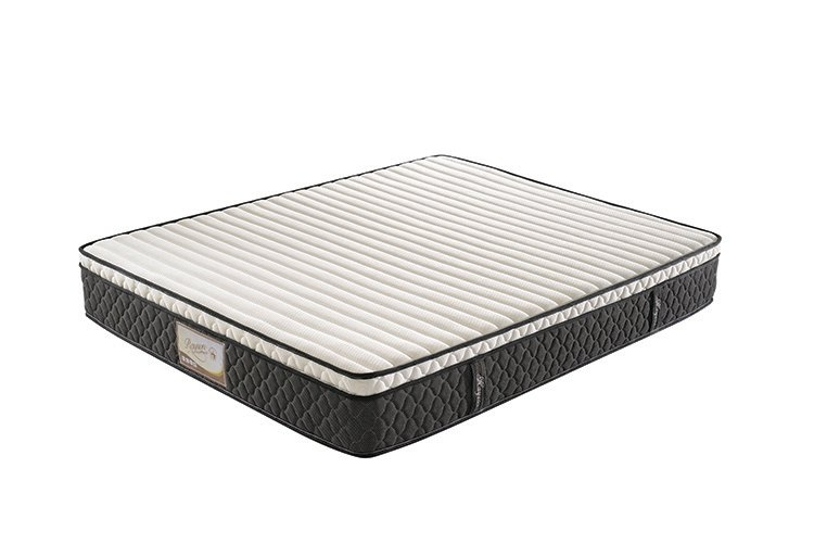 Rayson Mattress-Euro top roll pack pocket spring mattress online sales-1