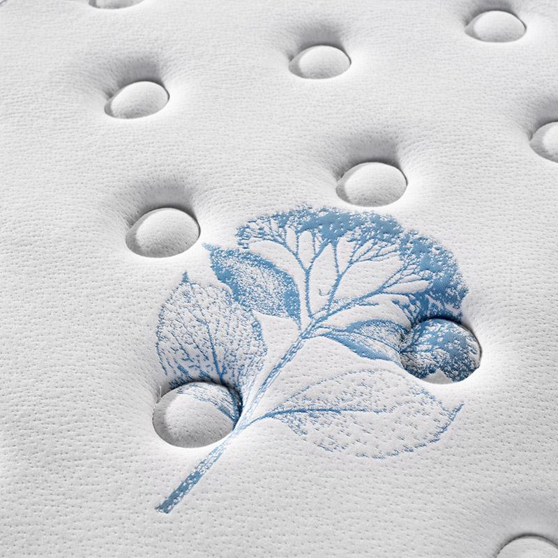 Rayson Mattress-Find Great Memory Foam Mattress which Memory Foam Mattress On Rayson Spring-1