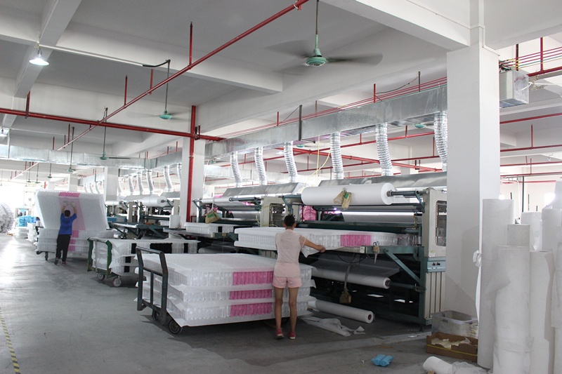 Rayson Mattress-Spring Mattress Manufacturer, Home Life Queen Size Royal Pocket Coil Mattress-6