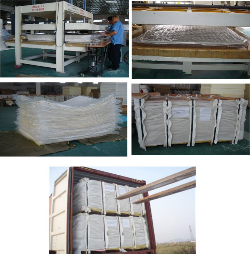 Rayson Mattress-Manufacturer Of Spring Mattress Manufacturer Medium Firm Double Pillow-5