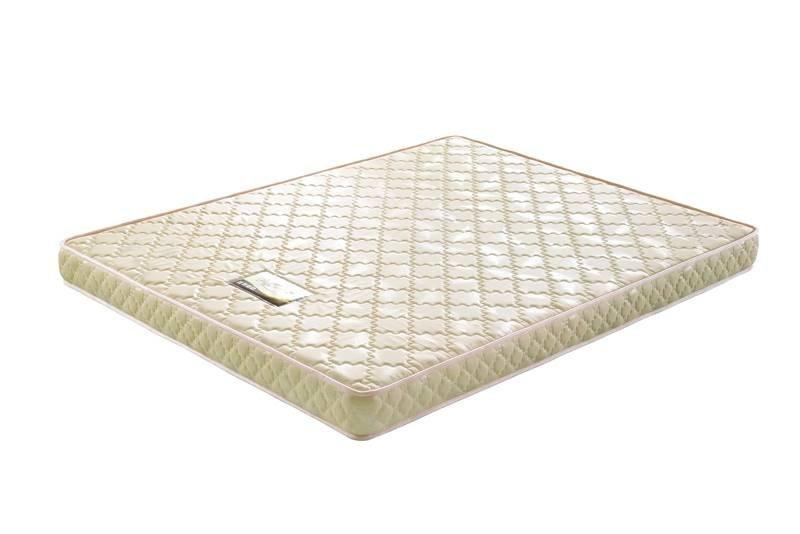 6 inch foam mattress